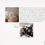 scraps_2011.12.05_002