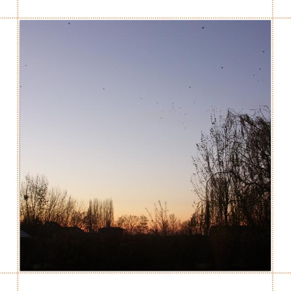 scraps_2013.12.01_002